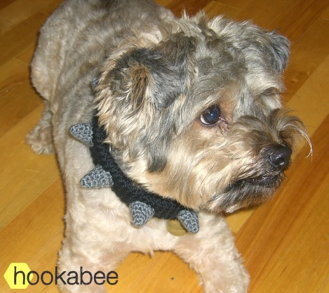 Crochet spiked dog collar free pattern by @hookabee crochet (www.hookabee.com) #crochet #pattern #dogcollar #dogs #free #freepattern